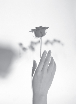 single-rose-with-hand-bw.jpg
